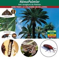 NemaPalmier 50 millions pour 1 à 5 palmiers