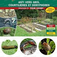 Nematodes anti Vers Gris, Courtilières, Tipules, Noctuelles, 500 millions 1000m2