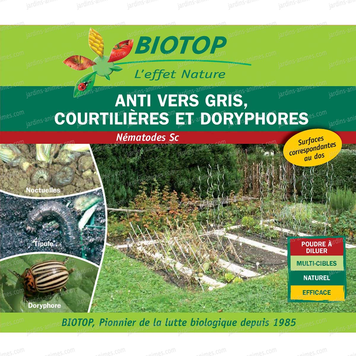 Nematodes 25millions anti vers gris courtili res tipules for Vers gris traitement