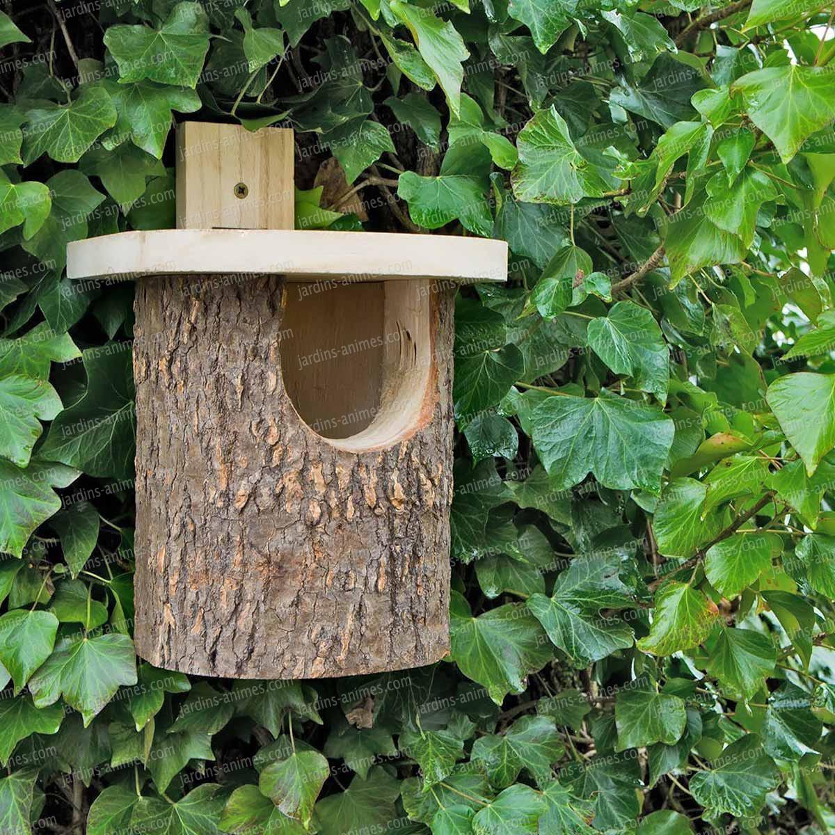 jardins anim s animaux oiseaux nichoirs pour oiseaux nichoir rouge gorge en bouleau. Black Bedroom Furniture Sets. Home Design Ideas
