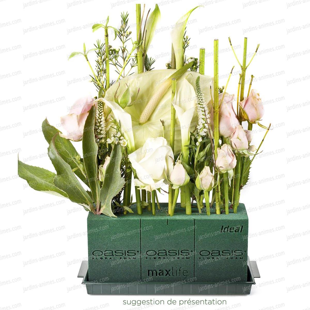 brique de mousse florale plantes fleurs et mousses. Black Bedroom Furniture Sets. Home Design Ideas