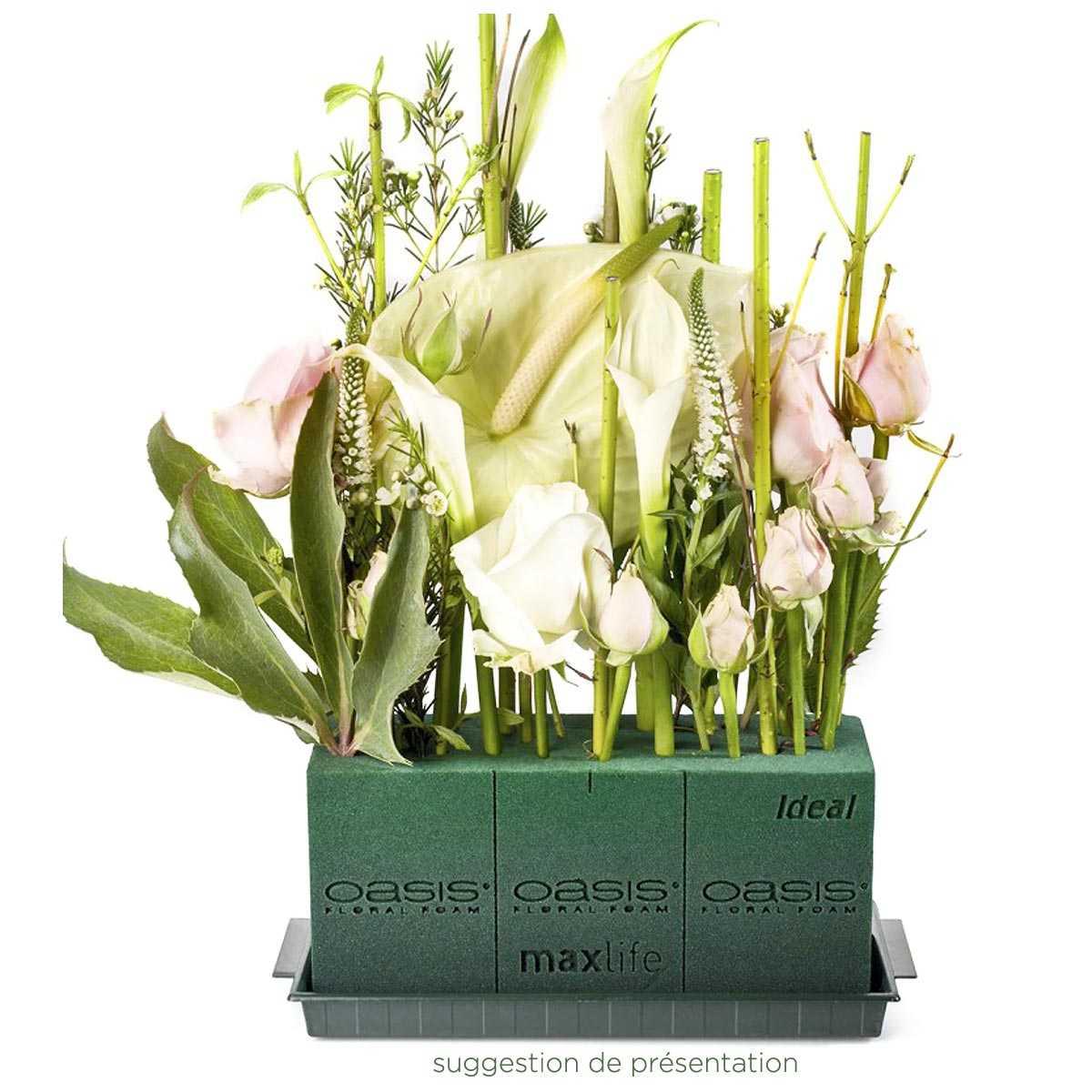 Ou Acheter De La Mousse Pour Piquer Des Fleurs brique de mousse florale