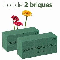Brique de mousse florale OASIS Lot de 2