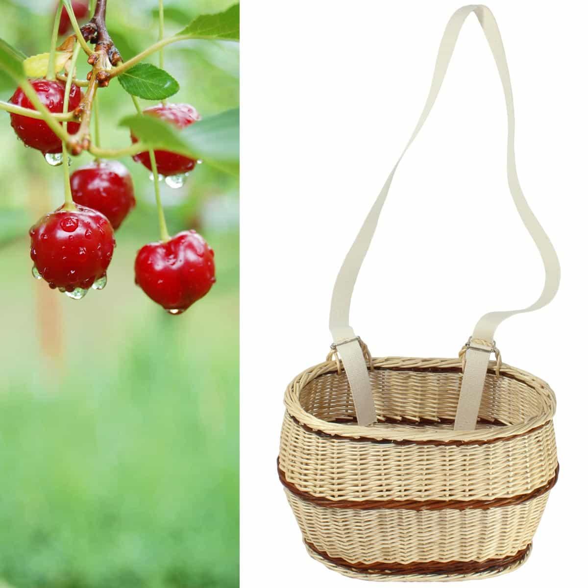 panier cueillette cerise et fruits en osier r colter les fruits. Black Bedroom Furniture Sets. Home Design Ideas