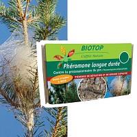 Phéromone contre la chenille processionnaire du pin - 6 mois (1 capsule longue durée)