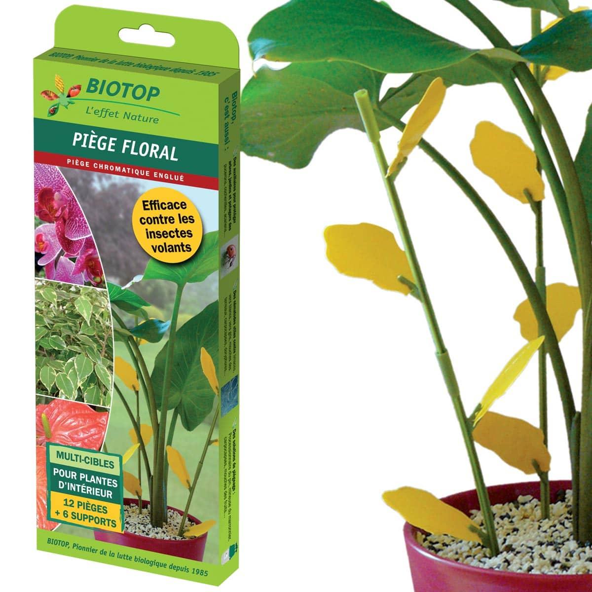 jardins anim 233 s jardin bio lutte bio anti nuisibles anti mouche moucherons bio pi 232 ge floral contre