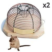 Cage Piège à Rat Nasse Multiprise Vente Au Meilleur Prix