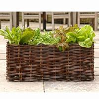 Potager Balcon salade et tomate 62L