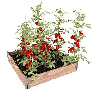 Carré potager bois 100x100cm - Pin, made in France