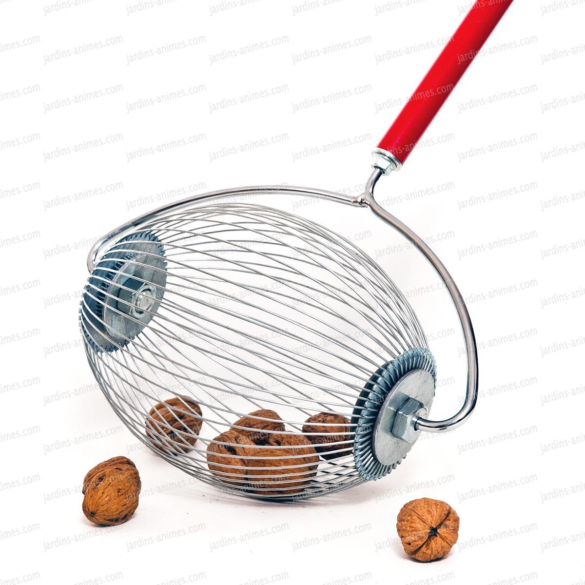 rouleau ramasse noix chataigne marron r colter les fruits. Black Bedroom Furniture Sets. Home Design Ideas