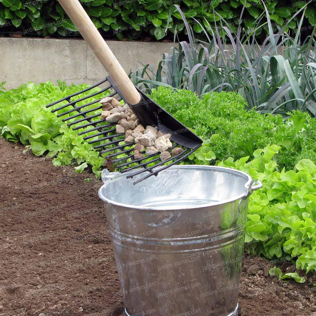 Rateau ramasse pomme de terre r colter les fruits - Tondre la pelouse sans ramasser ...