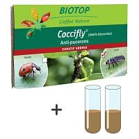 Recharge pour kit d'élevage - 50 larves Coccifly + 2 tubes de nourriture