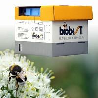 Ruche de Bourdons pollinisateurs moins de 250m2