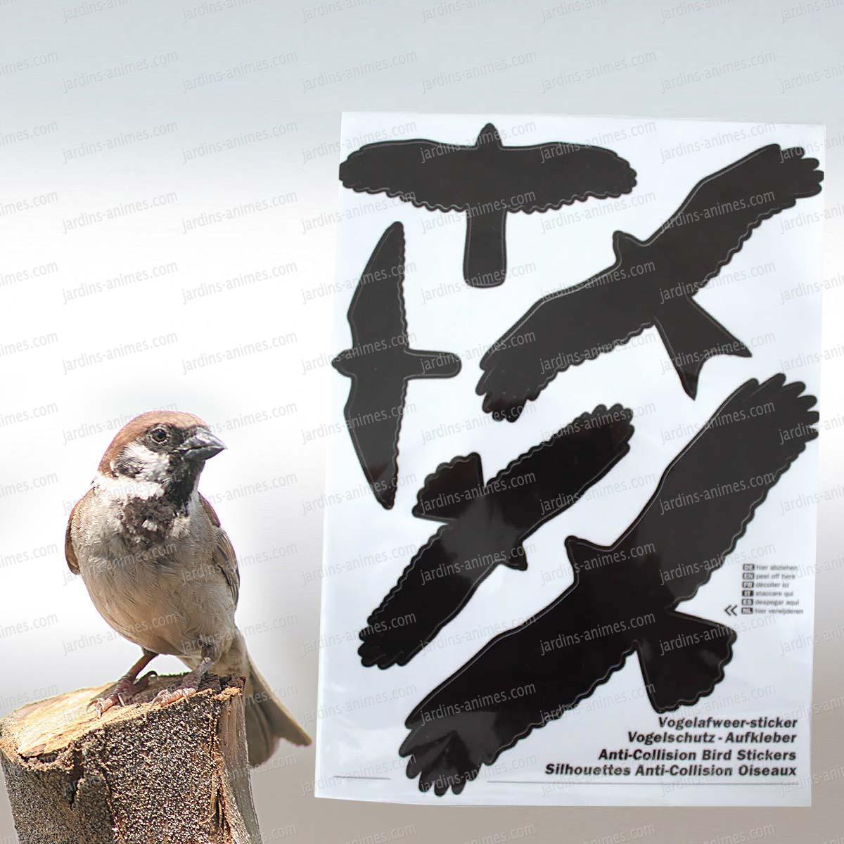 silhouette anti collision oiseau 1 feuille de 5 autocollants mangeoires bains d 39 oiseaux. Black Bedroom Furniture Sets. Home Design Ideas