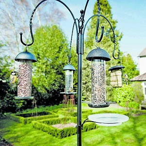 Jardin Oiseau Cacahuète Mangeoire pour oiseaux Métal demi ronde à fixer à surface plane.