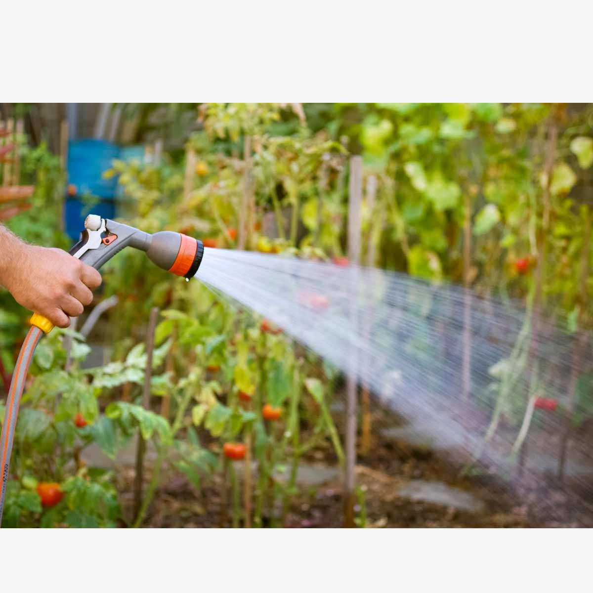 Quelle solution d arrosage choisir pour son jardin ? - L arrosage goutte a goutte Iriso
