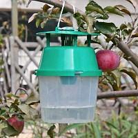 Piège et phéromone carpocapse pommes poires noix