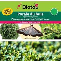 Phéromone Pyrale du buis LONGUE DUREE (2 capsules)
