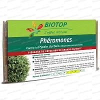 Phéromone Pyrale du buis (2 capsules) courte durée