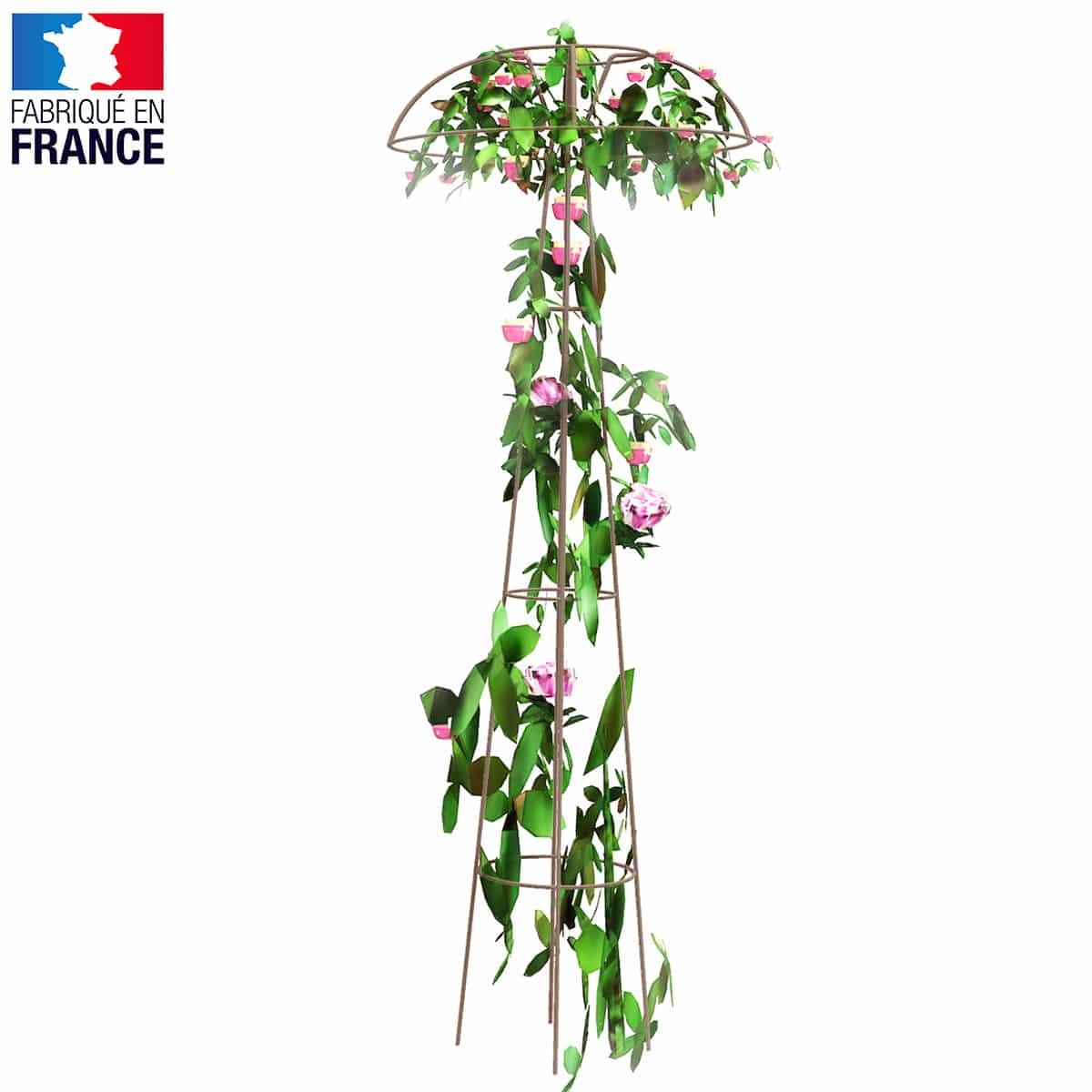 Quel Support Pour Une Glycine tuteur colonne pour rosier pleureur et grimpant avec couronne