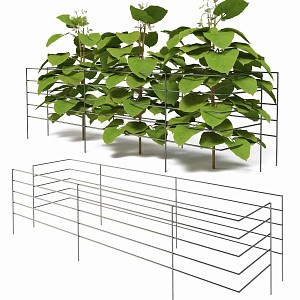Tuteur support pour haricots long.90cm - Lot de 2