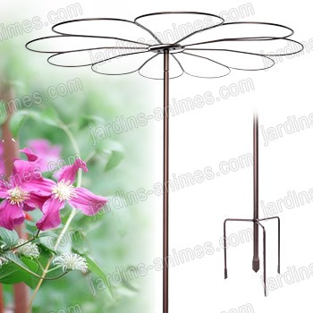 Tuteur parapluie marguerite tuteurs de jardin - Support fer forge pour rosier grimpant ...