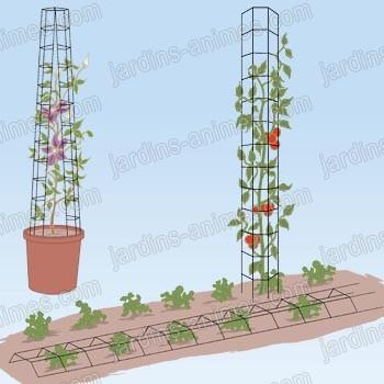 tuteur tomate universel x2 tuteurs tomates. Black Bedroom Furniture Sets. Home Design Ideas