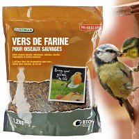 Nourriture vers de farine séchés pour oiseaux 1.2kg